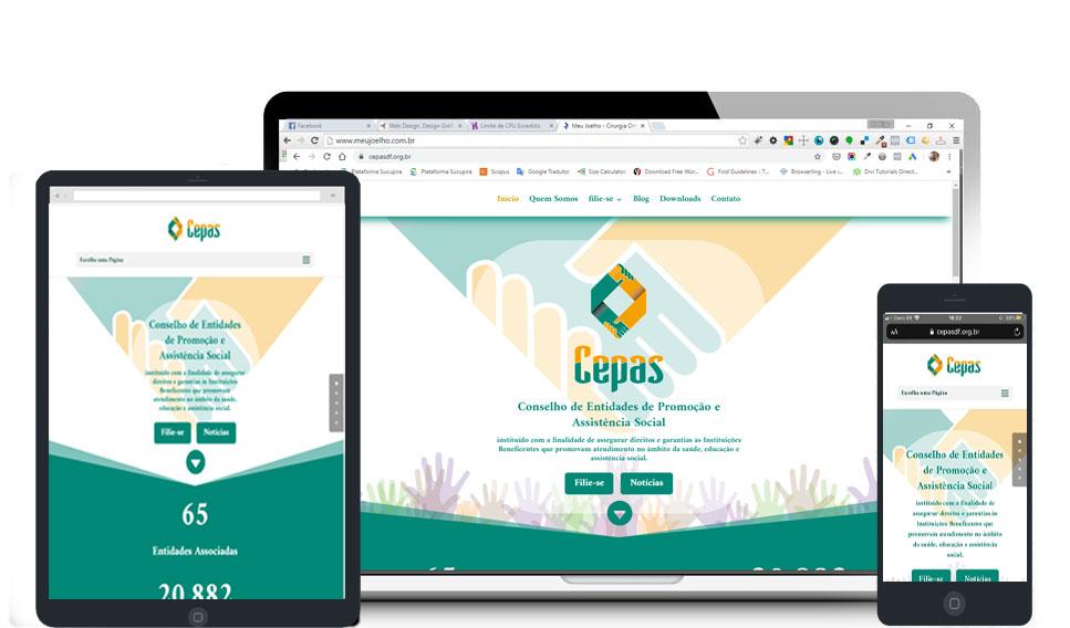 Criação de Site para Entidade Social em Brasília DF